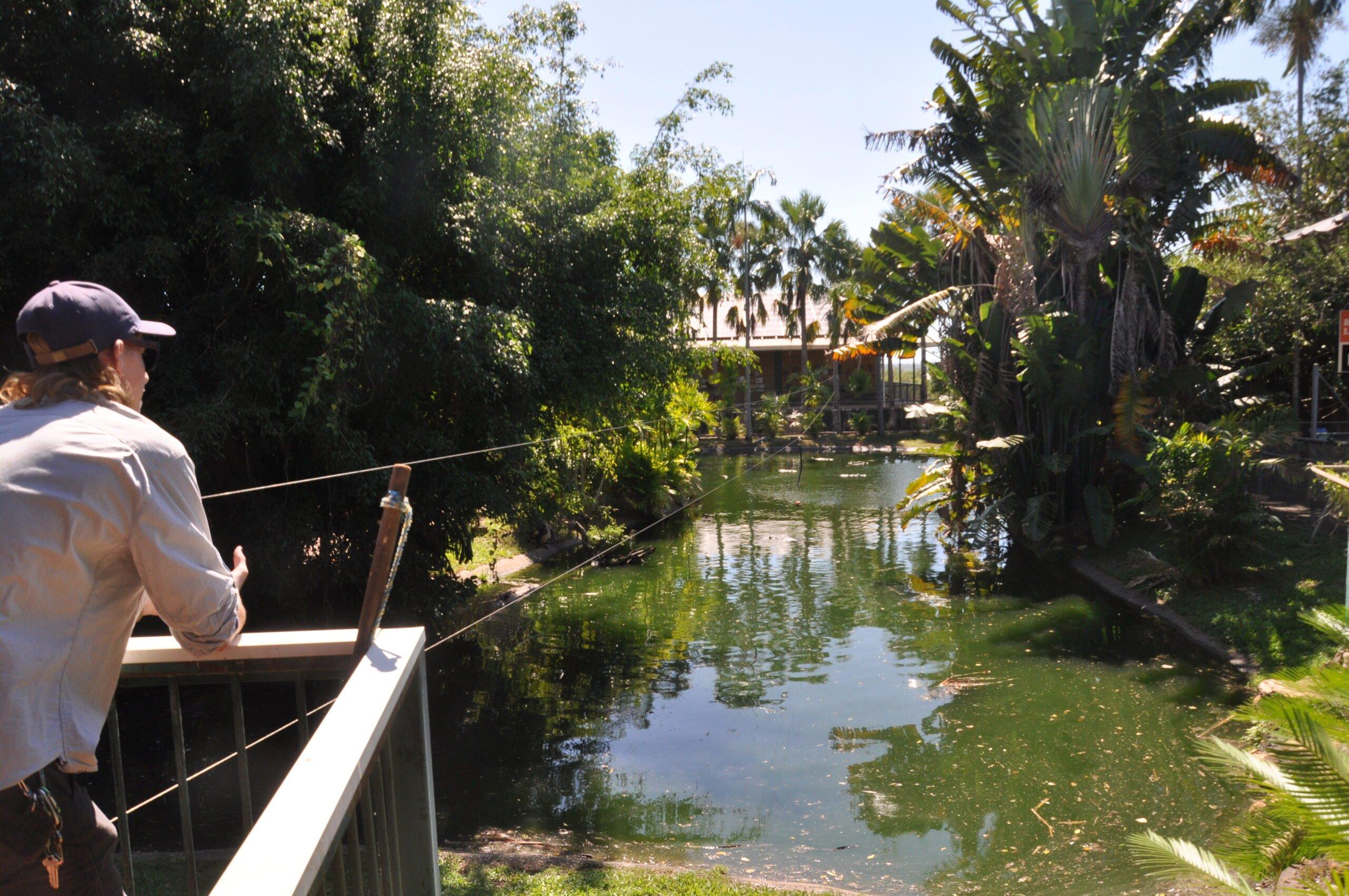 Darwin – Crocodilus Park