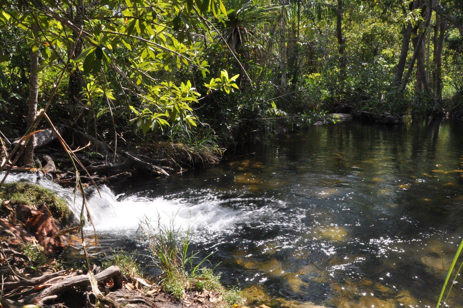 Litchfield National Park – Part 8 – Walker Creek
